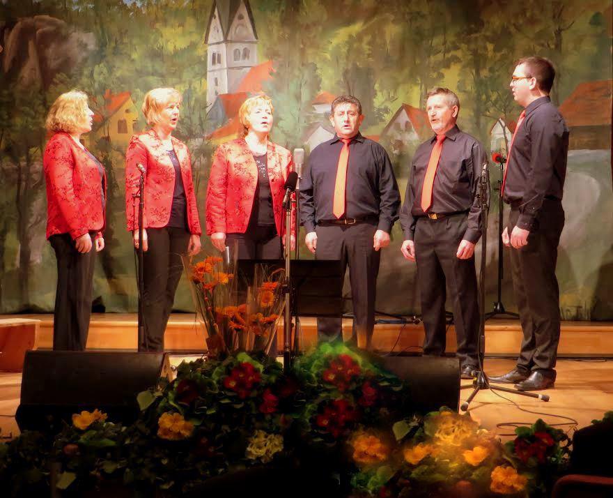 Ljudski pevci Prijatelji - nastop Vinska Gora 880